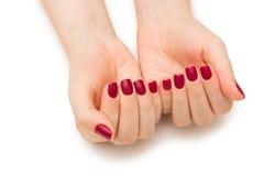 Les mains de femme avec le clou rouge d'isolement sur le blanc Photos stock