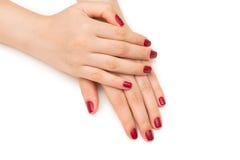 Les mains de femme avec le clou rouge d'isolement sur le blanc Image stock