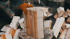 Les mains de l'homme coupent de grands rondins et troncs d'arbre avec la hache pour un futur feu banque de vidéos
