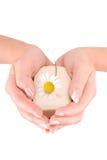 Les mains de la femme retenant un bar de savon Image libre de droits