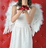 Les mains de la fille d'ange étirent une rose rouge dans une robe blanche sur un fond rouge photos libres de droits