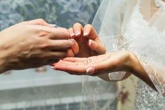 Les mains des femmes Image stock