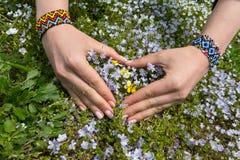 Les mains des femmes se sont pliées sous forme de coeur et wildflowers Photo libre de droits