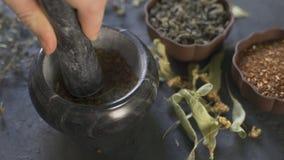 Les mains du chef utilisant un mortier et un pilon en pierre pour rectifier avec confiance une sélection des herbes et des épices banque de vidéos