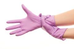 Les mains du docteur féminin mettant sur le pourpre ont stérilisé les gants chirurgicaux Photos libres de droits