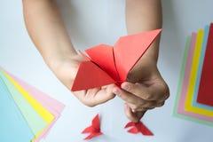 Les mains du ` s d'enfants font le papillon d'origami du papier coloré sur le fond blanc photographie stock