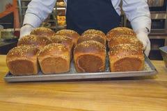Les mains du ` s de Baker ont pris le pain du four image libre de droits