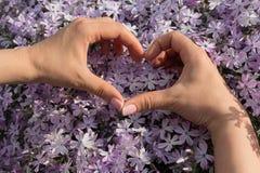 Les mains du ` s de femmes se sont pliées sous forme de coeur et fleurs Photos libres de droits