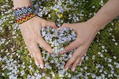 Les mains du ` s de femmes se sont pliées sous forme de coeur et wildflowers Image stock