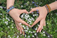 Les mains du ` s de femmes se sont pliées sous forme de coeur et wildflowers Photo stock
