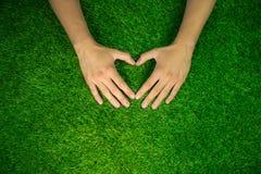 Les mains faisant le coeur forment sur le fond d'herbe verte Photo stock