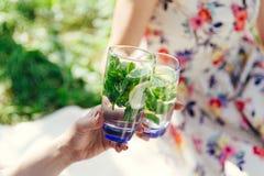 Les mains femelles faisant tinter des verres ont rempli eau de citron et de feuilles en bon état de vert Pique-nique dans le jard Images stock