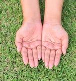 Les mains ouvertes sur l'herbe Photo libre de droits