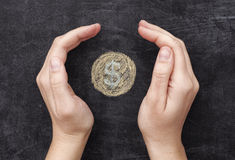 Les mains protégeant le dollar dessiné inventent sur le backgroun noir de tableau Photographie stock