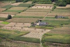 Les maisons de l'agriculteur au milieu du champ de maïs Photo stock