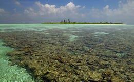Les Maldives - lagune tropicale images libres de droits
