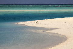 Les Maldives : le beau littoral de l'île du soleil dans l'atoll d'Ari Images libres de droits