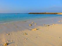 Les Maldives, vivent dans un paradis image stock