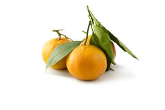 Les mandarines avec des feuilles ont isolé le fond Images stock