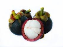 Les mangoustans isolent sur le blanc Images libres de droits