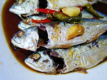 Les maquereaux délicieux de klong de mae avec de la sauce douce dans le style thaïlandais Image libre de droits