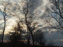 Les marais d'un coucher du soleil de la Louisiane photo stock