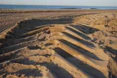 Les marques de la roue du tracteur qui nettoie la plage est Barcelone Photo libre de droits