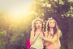 Les meilleures amies cachent des lèvres derrière des lucettes Coucher du soleil Image libre de droits