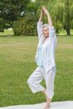 Les meilleures femmes d'ager pratiquant le chi de tai de fourmi de yoga images stock