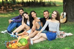 Les meilleurs amis détendent au pique-nique avec le panier de guitare et de fruits Images libres de droits