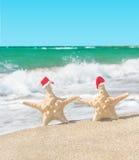 les Mer-étoiles couplent dans des chapeaux de Santa marchant à la plage de mer Photographie stock libre de droits