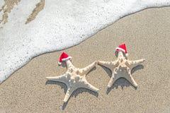 les Mer-étoiles couplent dans des chapeaux de Santa sur le sable Image libre de droits