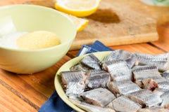 Les merluches pêchent avec le mélange du paprika de farine et de la farine de maïs prêts pour faire frire Images libres de droits