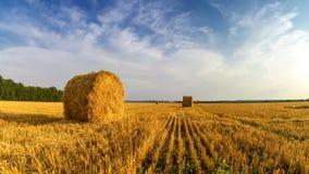 Les meules de foin en automne mettent en place, rural, Russie, Ural Images libres de droits