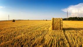 Les meules de foin en automne mettent en place, rural, Russie, Ural Images stock