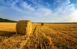 Les meules de foin en automne mettent en place, rural, Russie, Ural Photos stock