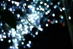 Les mini lumières, se ferment  Image libre de droits