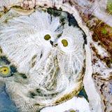 Les modèles abstraits au sol de l'eau coule ressemblant au hibou Images libres de droits