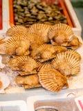 Les mollusques et crustacés chez Hong Kong ont mouillé le marché Images libres de droits