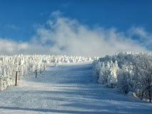 Les monstres et le ski de neige d'arbres congelés par Yamagata inclinent au mt Zao Photographie stock libre de droits