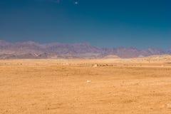 Les montagnes abandonnez, de Sinai et le ciel en Egypte Images libres de droits