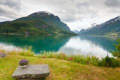 Les montagnes aménagent en parc, fjord et endroit de repos, Norvège Photographie stock