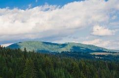 Les montagnes carpathiennes 35 Photographie stock libre de droits