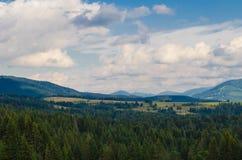 Les montagnes carpathiennes 33 Images stock