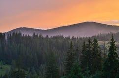 Les montagnes carpathiennes 28 Images libres de droits