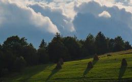 Les montagnes carpathiennes 26 Image stock