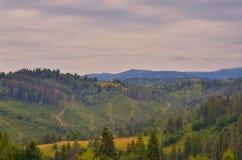 Les montagnes carpathiennes 24 Photographie stock libre de droits