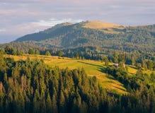 Les montagnes carpathiennes 5 Images stock