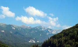 Les montagnes carpathiennes de Roumanie Image stock