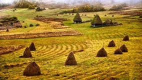 Les montagnes carpathiennes sauvages de la Roumanie dans le temps d'automne aménagent en parc Images libres de droits